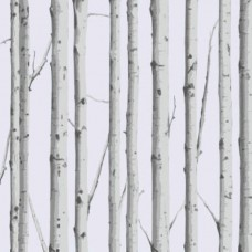 Woodland Silver Birch Sealed Bottom Pocket